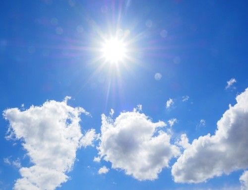 Vitamin D and Immune System Health